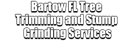 Bartow FL Tree Trimming and Stump Grinding Services logo-We Offer Tree Trimming Services, Tree Removal, Tree Pruning, Tree Cutting, Residential and Commercial Tree Trimming Services, Storm Damage, Emergency Tree Removal, Land Clearing, Tree Companies, Tree Care Service, Stump Grinding, and we're the Best Tree Trimming Company Near You Guaranteed!