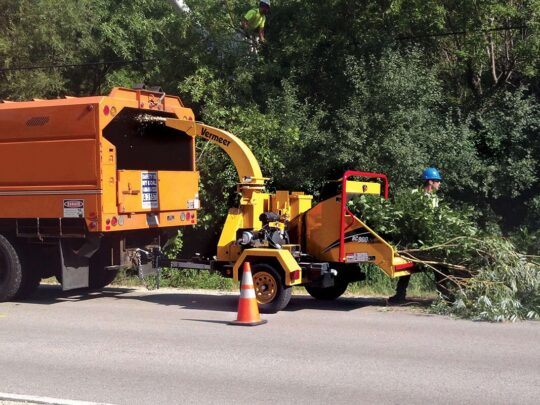 Commercial Tree Services-Bartow FL Tree Trimming and Stump Grinding Services-We Offer Tree Trimming Services, Tree Removal, Tree Pruning, Tree Cutting, Residential and Commercial Tree Trimming Services, Storm Damage, Emergency Tree Removal, Land Clearing, Tree Companies, Tree Care Service, Stump Grinding, and we're the Best Tree Trimming Company Near You Guaranteed!